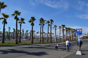 Площадь перед Олимпийским парком
